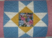 Year_Long_Sampler_Quilt_5