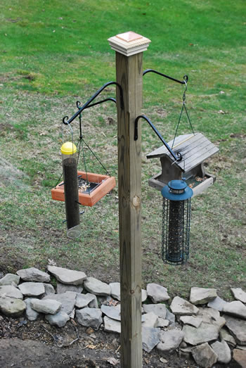 Building A Bird Feeder Pole