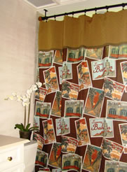 1showercurtain1