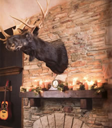 A moose head over the mantel - MattandShari.com